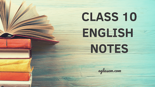 Class 10 English The Ball Poem Notes, Important Questions